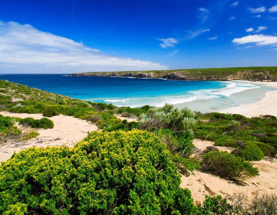 Tour Australia Terra dei Contrasti