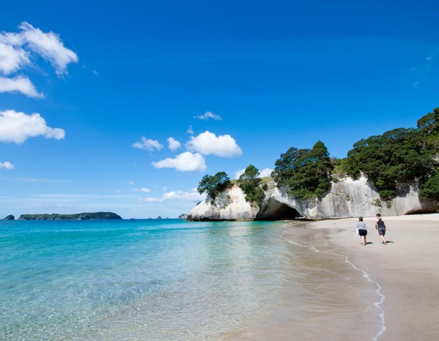 Tour Nuova Zelanda in Auto Da Auckland a Wellington