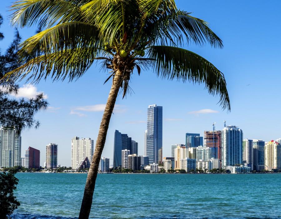 Crociera Miami & Western Caribbean