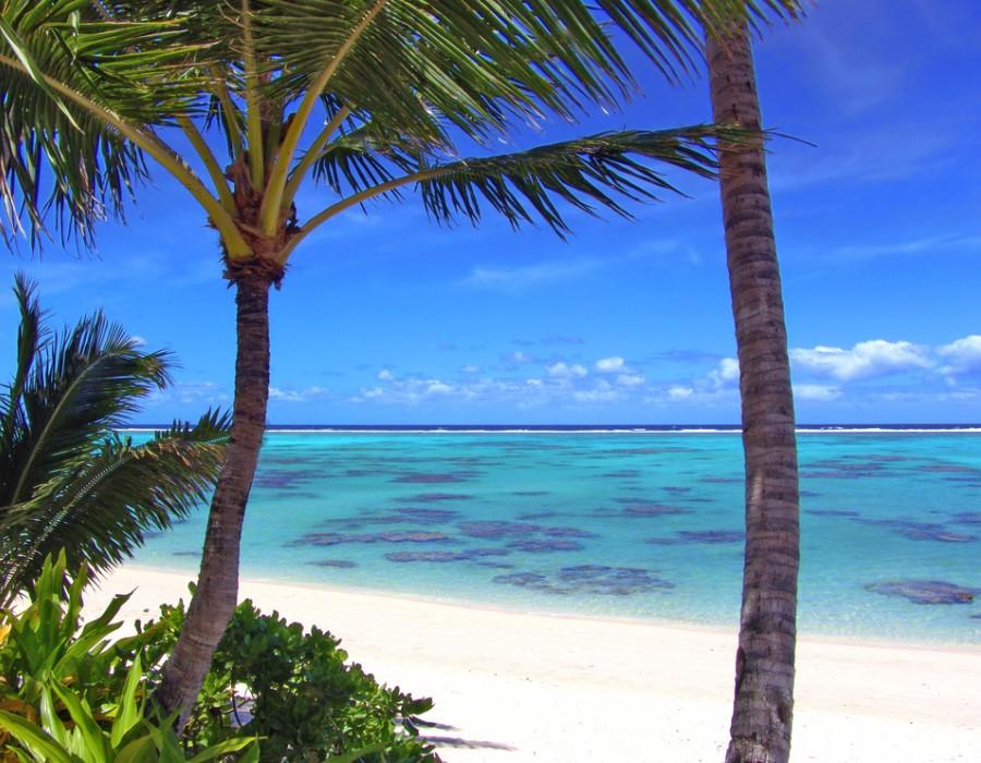 Dining Experience Pacific Resort Rarotonga