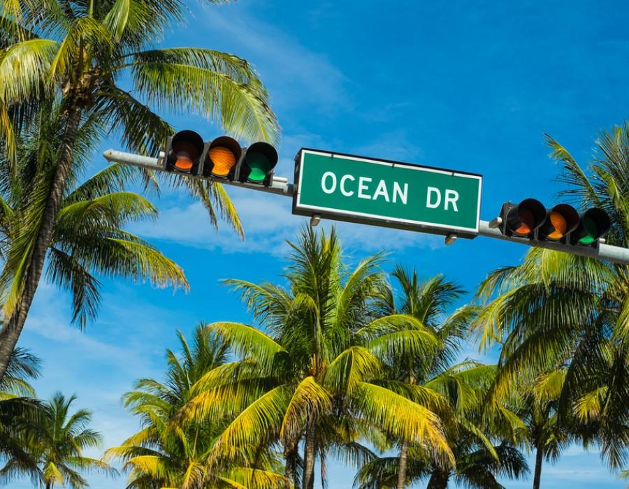 Escursioni a Miami