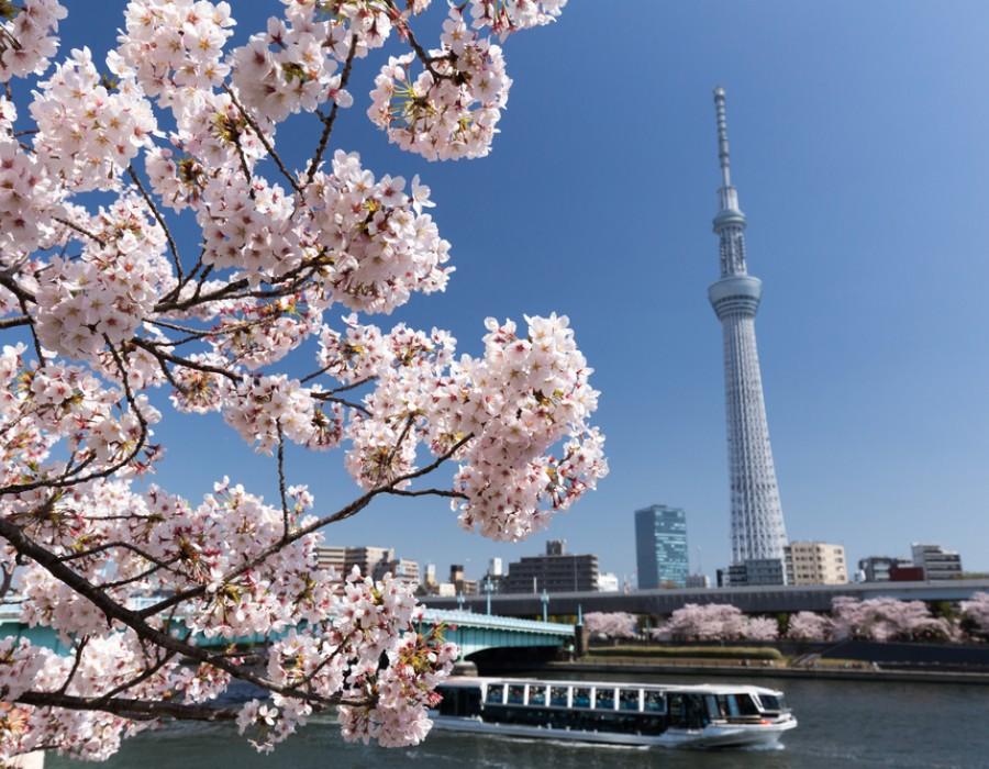 Tour Giappone Insolito Kanto