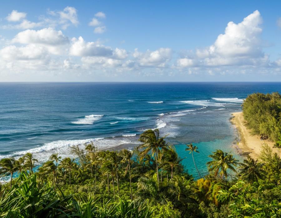 Escursione mare Grand Hyatt Kauai Resort & Spa