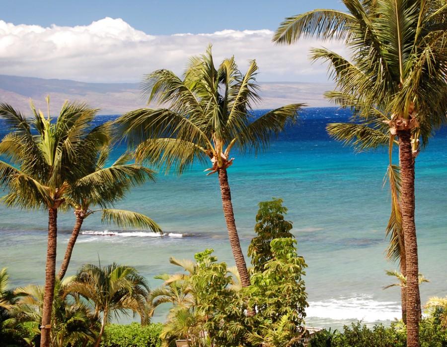 Estensione Mare Hyatt Regency Maui Resort & Spa