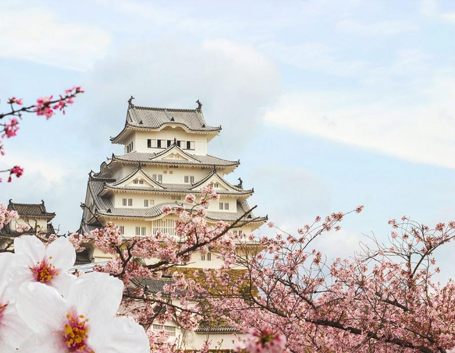 Tour Giappone Moderno e Classico Hiroshima, Miyajiima & Himeji Castle