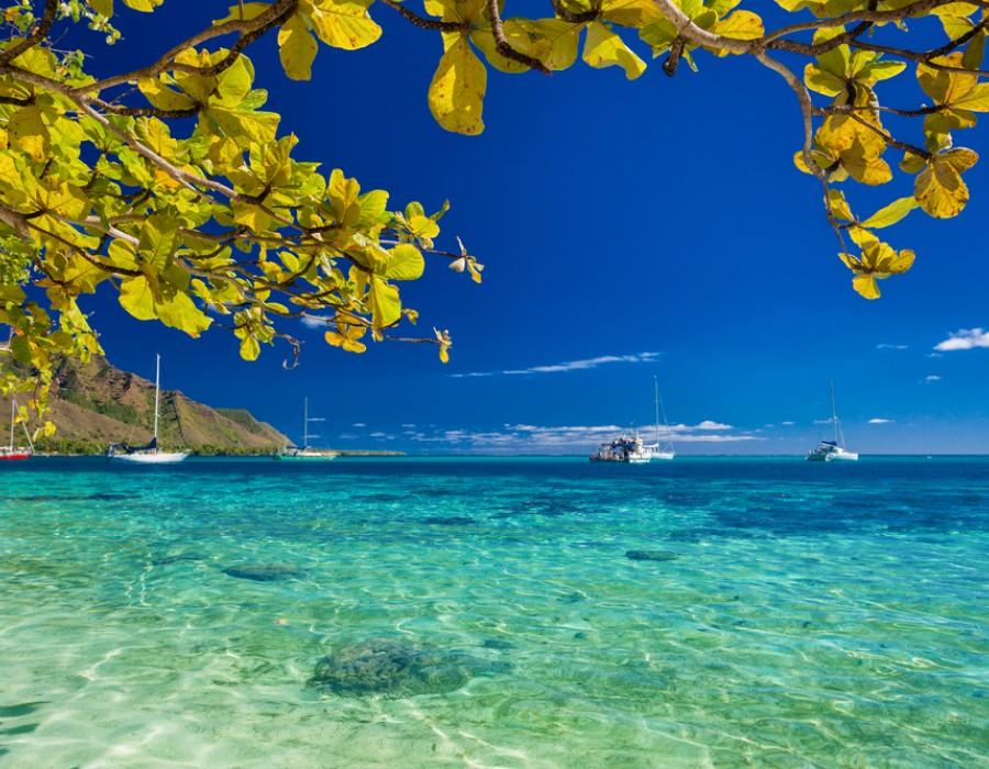 Irrinunciabile Polinesia