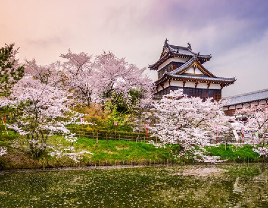 Tour Giappone Moderno e Classico e Moorea polinesiana