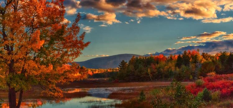 Parco Nazionale di Acadia